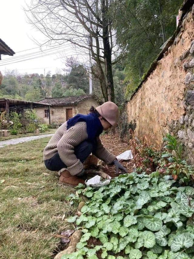 Chán cuộc sống phố thị, cô gái lên núi làm căn nhà nhỏ ngập hoa lá - 10
