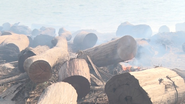 Hàng trăm cây gỗ tại công trường gỗ lậu bị đốt, tẩu tán dưới lòng hồ - 3