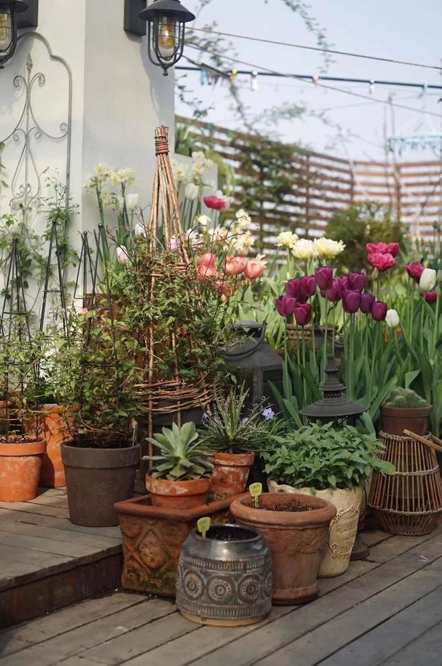 Mẹ cùng con gái biến sân thượng thành thiên đường trăm loài hoa - 7