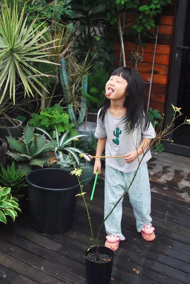 Mẹ cùng con gái biến sân thượng thành thiên đường trăm loài hoa - 10