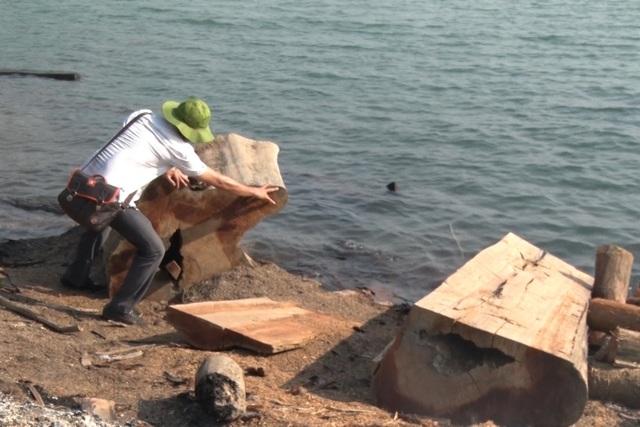Hàng trăm cây gỗ tại công trường gỗ lậu bị đốt, tẩu tán dưới lòng hồ - 4