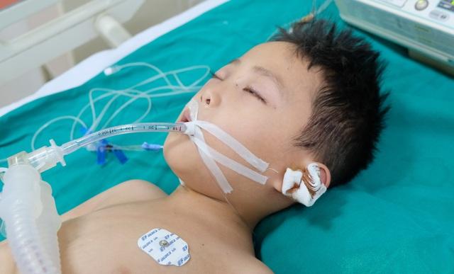 Tai nạn dồn dập, người mẹ trẻ ngã khụyu cầu xin sự sống cho chồng, con - 2