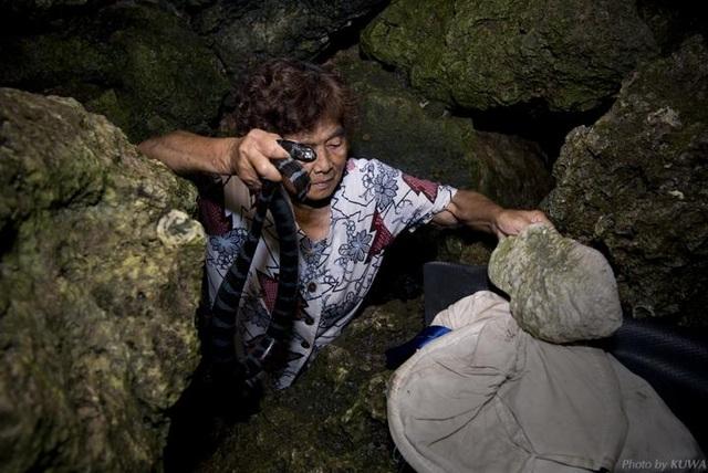 Hai cụ bà 70 tuổi dùng tay không bắt loài rắn độc hơn cả hổ mang - 2