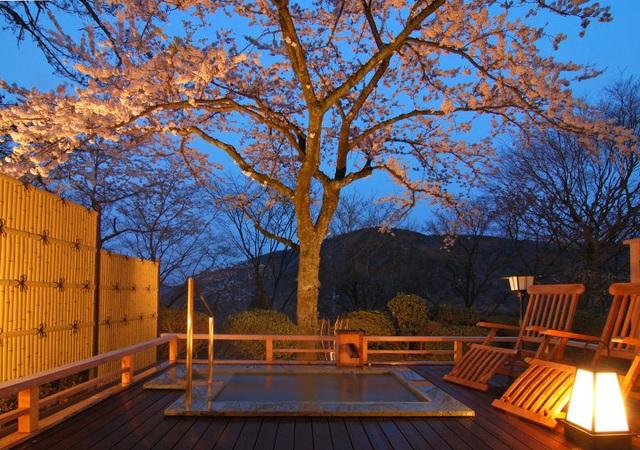 Tắm nước khoáng nóng từ núi Hakone tại ryokan cổ 130 tuổi - 3