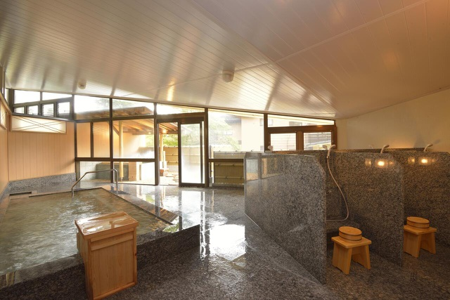 Tắm nước khoáng nóng từ núi Hakone tại ryokan cổ 130 tuổi - 5