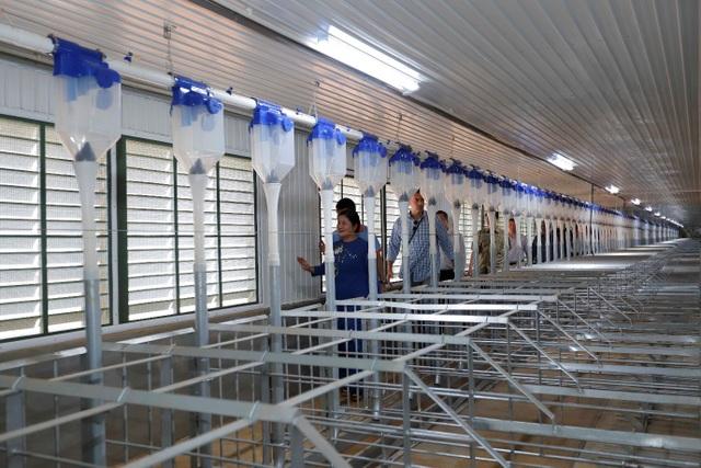 Japfa khánh thành trại heo quy mô 10.000 nái - 3