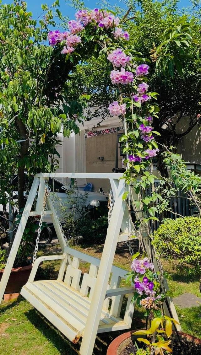 Khu vườn 300m2, bốn mùa ngập sắc hoa ở Vũng Tàu - 8