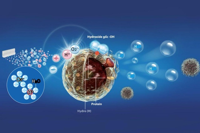 Tận hưởng không gian trong lành cùng bộ sản phẩm mang công nghệ Plasmacluster Ion - 4
