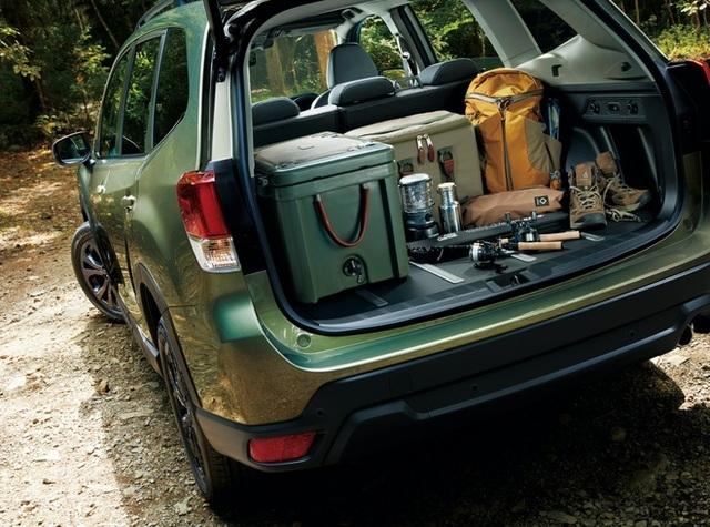 Cách sắp xếp hành lý trên ô tô gọn gàng, tối ưu cho các chuyến đi chơi - 2