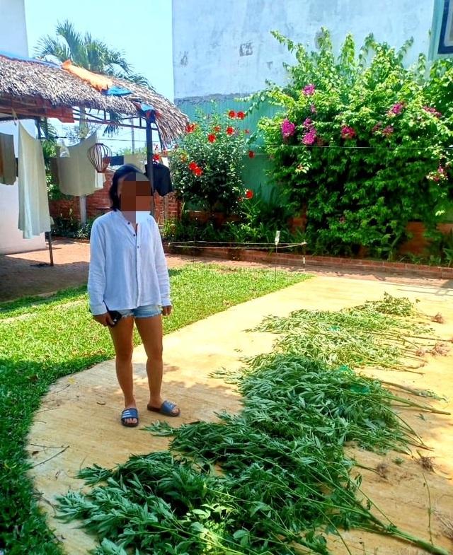 Người phụ nữ trồng hàng chục cây cần sa để… chữa mất ngủ? - 1