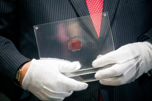 Con tem 345 tỷ đồng: Đắt nhất thế giới nhưng từng bị bán với giá như cho - 3