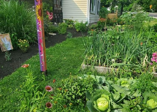 Ấn tượng khu vườn rộng lớn đủ loại hoa trái của đại gia đình 9 người - 3