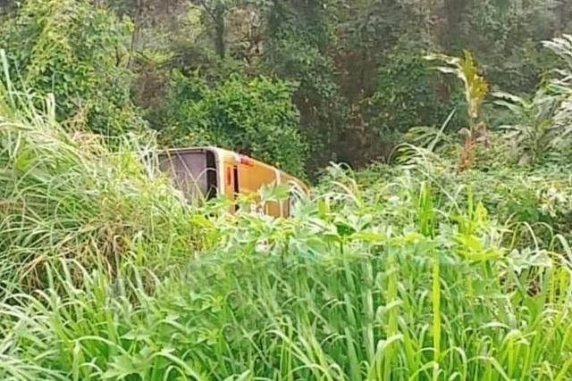 Xe khách lao xuống vực, 22 người thoát chết nhờ… hàng cây - 1