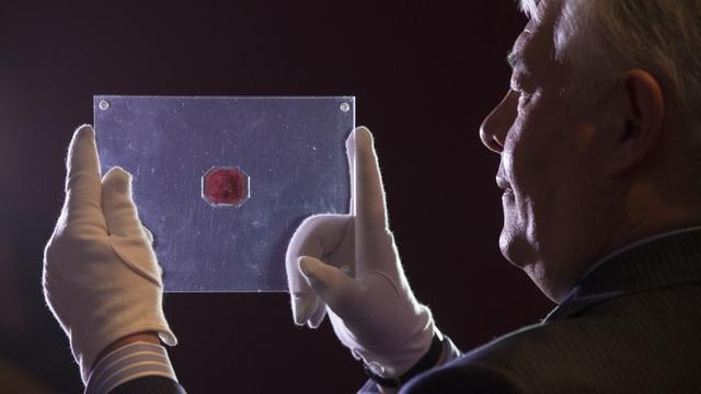 Con tem 345 tỷ đồng: Đắt nhất thế giới nhưng từng bị bán với giá như cho - 4