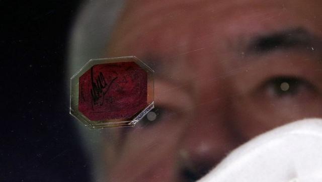Con tem 345 tỷ đồng: Đắt nhất thế giới nhưng từng bị bán với giá như cho - 2