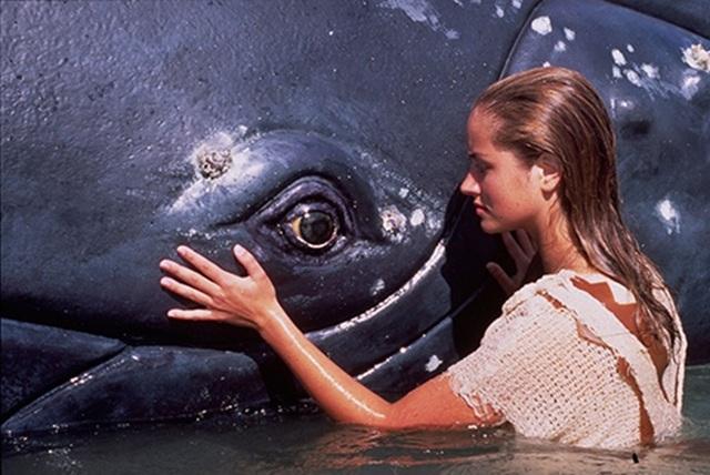 Bất ngờ trước sự thay đổi của dàn diễn viên Cô gái đại dương sau 25 năm - 4