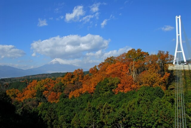 Ngắm núi Phú Sĩ từ cầu treo dài 400 m - 3