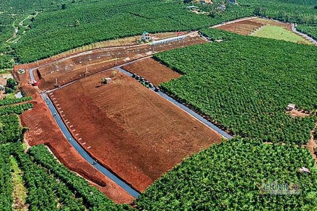 Lâm Đồng kiểm tra loạt khu đất phân lô bán nền gắn mác dự án bất động sản - 1