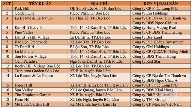 Lâm Đồng kiểm tra loạt khu đất phân lô bán nền gắn mác dự án bất động sản - 2