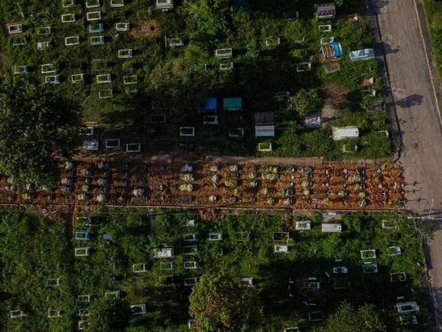 Hết đất an táng, nghĩa trang Brazil đào đường chôn nạn nhân Covid-19 - 2