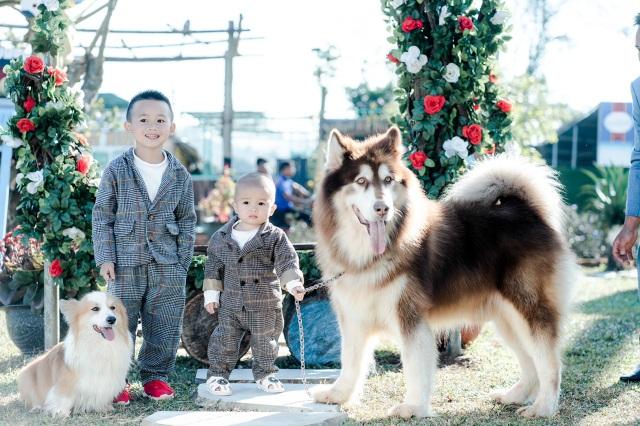 Bỏ phố về quê, chàng trai Đắk Lắk thành tỷ phú nhờ nghề… nuôi chó - 5