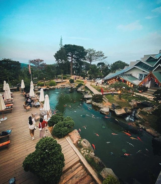 Vừa uống cà phê vừa ngắm cá Koi khủng giữa phố núi Đà Lạt - 4