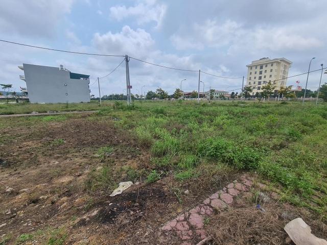 Cò mồi gây sốt đất có phải môi giới tại các sàn bất động sản? - 1
