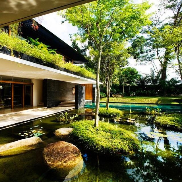 Ngôi nhà đẹp như resort nhờ vườn trên mái, hồ nước ngập cây - 3