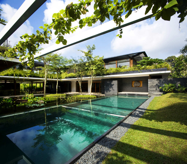 Ngôi nhà đẹp như resort nhờ vườn trên mái, hồ nước ngập cây - 5