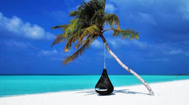 Nhà giàu Ấn Độ chi bộn tiền du lịch Maldives trốn sóng thần Covid-19 - 3