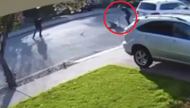 Clip người đàn ông hạ gục tên cướp có súng khiến dân mạng thán phục - 1