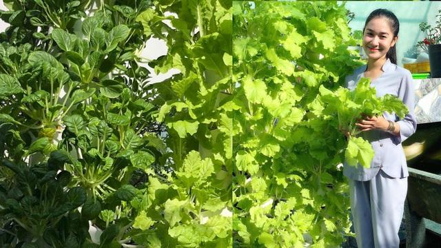 Nông dân 9X xinh đẹp sở hữu trại nấm và khu vườn trĩu quả vạn người mê - 7