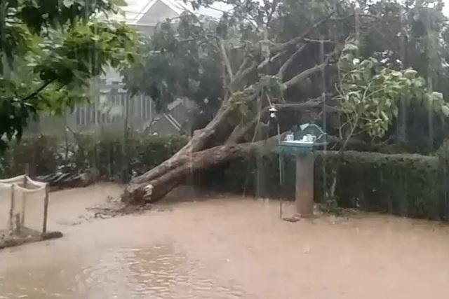 Quảng Trị:  Lốc xoáy làm đổ gần 50 nhà dân, ngã chốt phòng dịch Covid-19 - 2