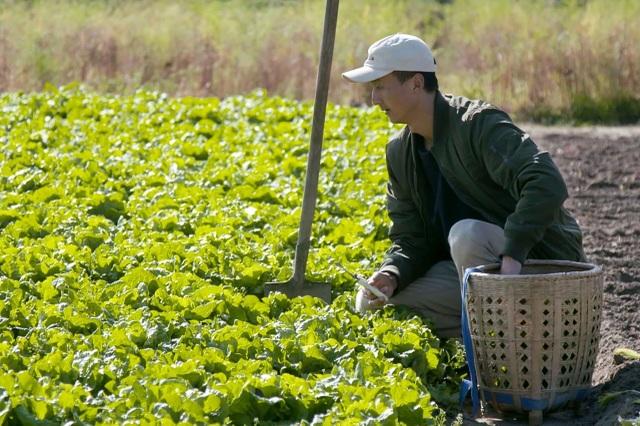 Ông bố trẻ về quê mở trang trại hàng trăm ha trồng rau, nuôi cá - 4