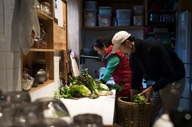 Ông bố trẻ về quê mở trang trại hàng trăm ha trồng rau, nuôi cá - 11