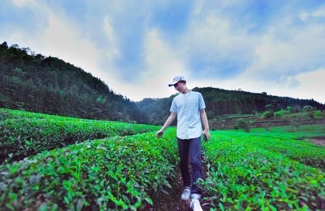 Chàng trai trẻ tậu ô tô, làm giàu nhờ về quê khởi nghiệp từ bán trà - 2