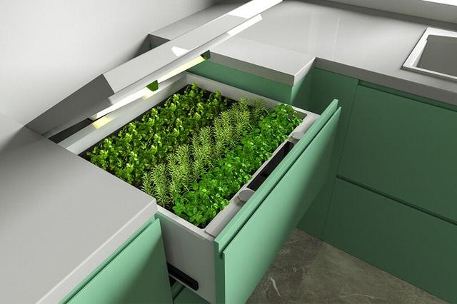 Khó tin vườn rau vô hình trong quầy bếp, dùng smartphone điều khiển từ xa - 1