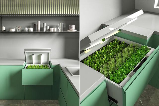 Khó tin vườn rau vô hình trong quầy bếp, dùng smartphone điều khiển từ xa - 3