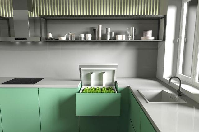 Khó tin vườn rau vô hình trong quầy bếp, dùng smartphone điều khiển từ xa - 4