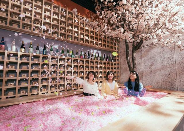 Ngâm mình trong 1,2 triệu cánh hoa sakura giữa lễ hội mùa xuân - 3