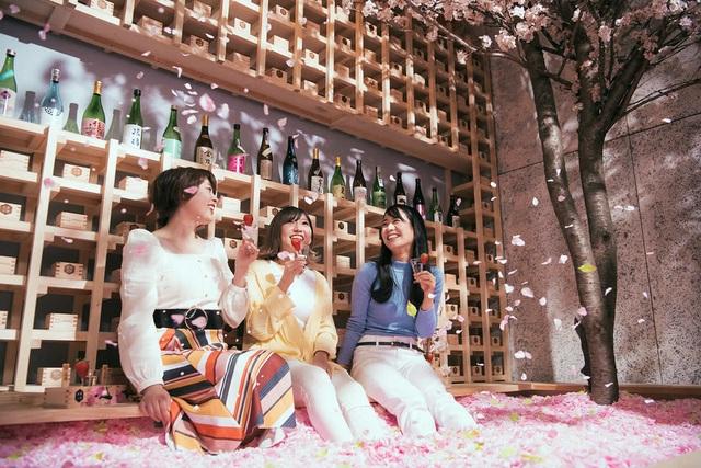 Ngâm mình trong 1,2 triệu cánh hoa sakura giữa lễ hội mùa xuân - 1