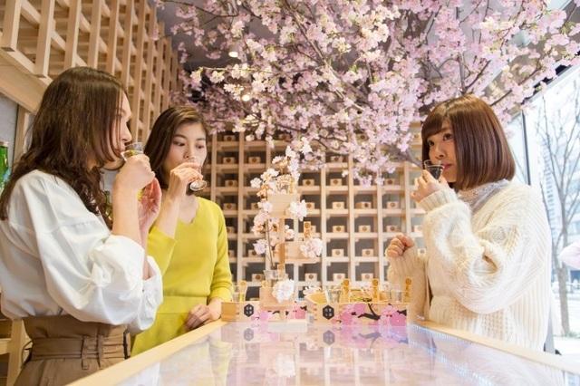 Ngâm mình trong 1,2 triệu cánh hoa sakura giữa lễ hội mùa xuân - 5