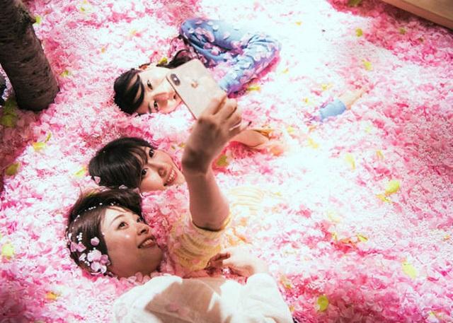 Ngâm mình trong 1,2 triệu cánh hoa sakura giữa lễ hội mùa xuân - 6