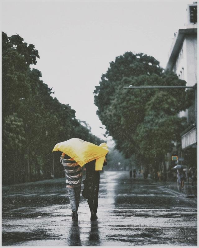 Khoảnh khắc đẹp trong cơn mưa lớn ở Hà Nội - 2