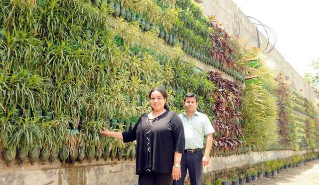 Biến chai nhựa thành vườn, vợ chồng khiến căn nhà mát mẻ hơn 5 độ C - 1