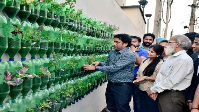 Biến chai nhựa thành vườn, vợ chồng khiến căn nhà mát mẻ hơn 5 độ C - 3