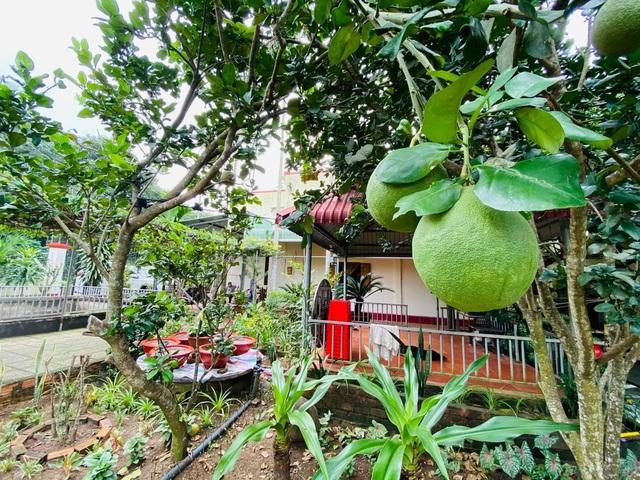 Vợ chồng 8X lên kế hoạch về hưu sớm, làm nhà vườn rộng 6000m2 ở Vũng Tàu - 4