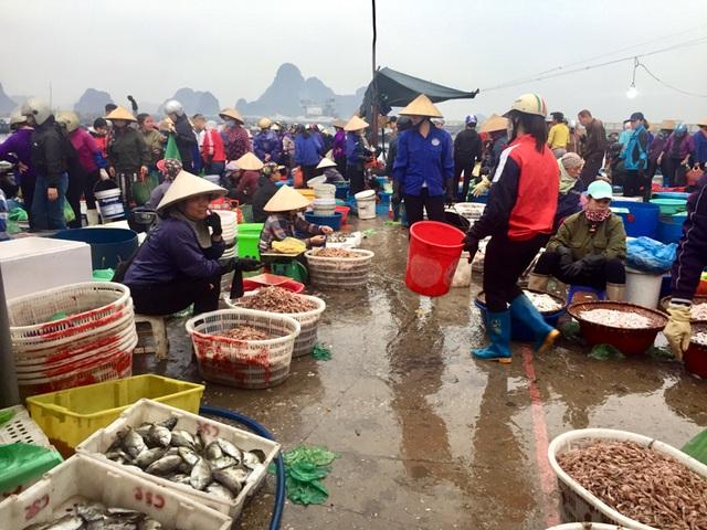 Một tiểu thương thăm người ốm ở Bệnh viện Nhiệt đới, cả chợ cá bị đóng cửa - 2