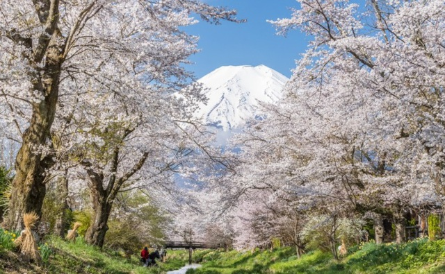Làng cổ tuyệt đẹp dưới chân núi Phú Sĩ - 5