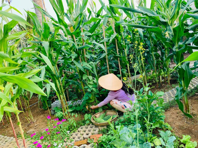 Khu vườn 720m2 đẹp như resort thu nhỏ người chồng tặng vợ ở Đồng Nai - 6